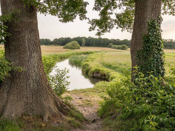 De mooiste loopplek van Noord-Nederland